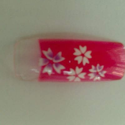 MX-T4015 Fantasy tips Red/White flowers box 70u
